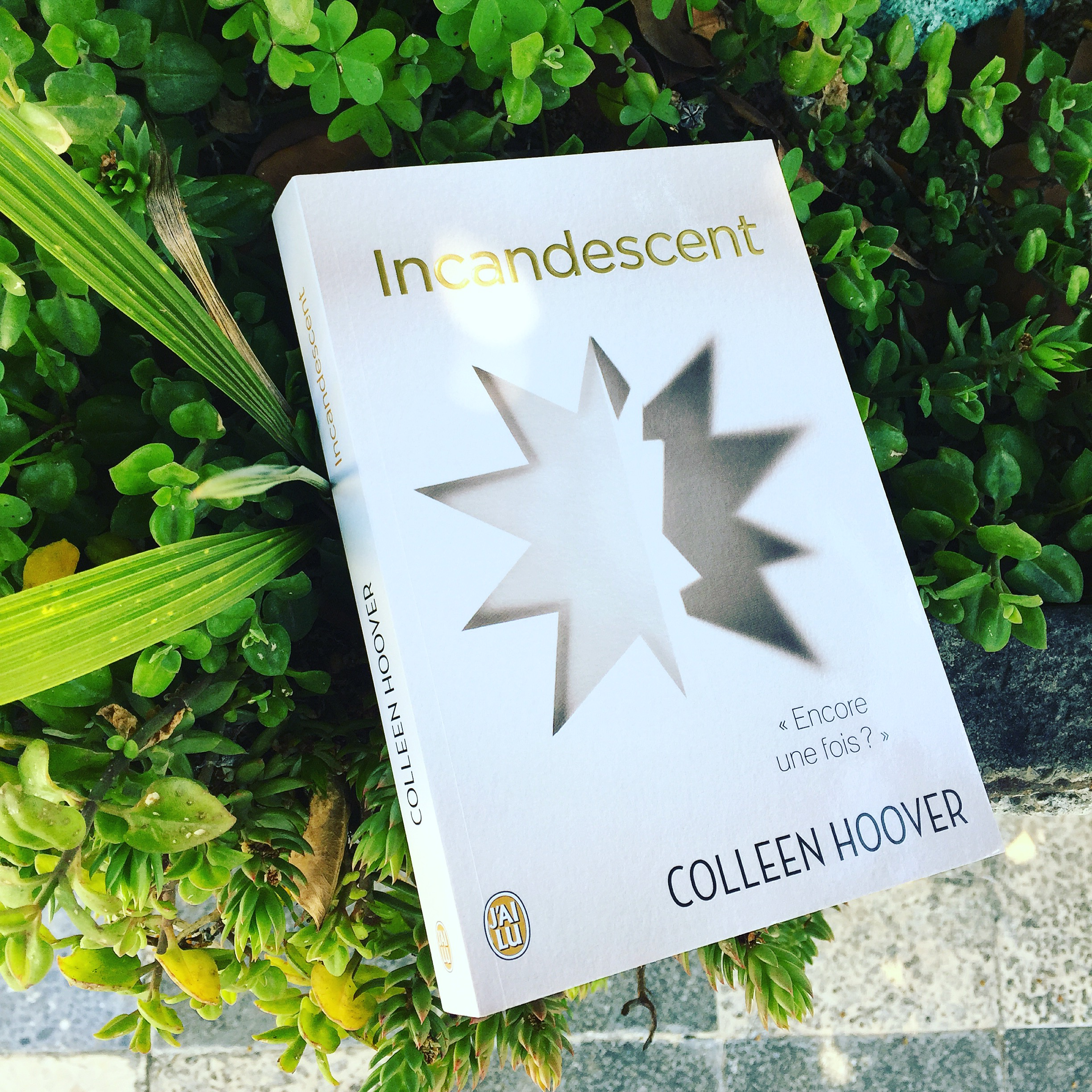 Incandescent Colleen Hoover - Aliastasia